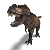 Rex del Tyrannosaurus Immagini Stock