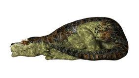 Rex del Tyrannosaurus del dinosaurio en blanco Foto de archivo libre de regalías