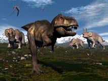 Rex di tirannosauro attaccato dal triceratopo illustrazione vettoriale