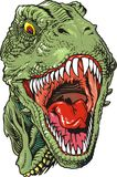 Rex di Tyranosaurus Immagine Stock Libera da Diritti