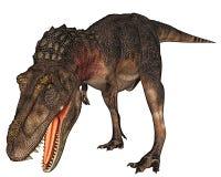 Rex do dinossauro de Dino que prepara-se para atacar Imagem de Stock