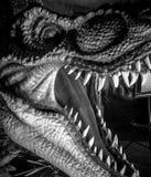 Rex do tiranossauro, maxila forte completamente dos dentes afiados e perigosos imagens de stock