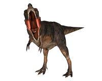rex för frontal byte för dino dinosaur klar till royaltyfri illustrationer