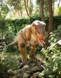 Rex-Late /150-65 crétacé de tyrannosaure il y a million d'ans Dans Photographie stock libre de droits
