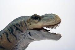 rex t arkivfoton