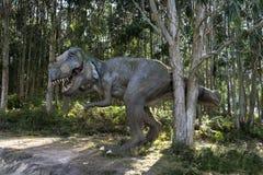 rex t Стоковое фото RF