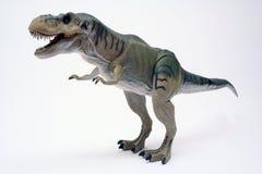 rex2 t arkivbilder