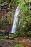 Rexio瀑布在Folgoso做Courel (或Caurel),卢戈,西班牙 库存照片