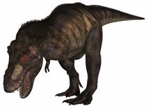 rextyrannosaurus för dinosaur 3d Royaltyfri Fotografi