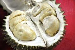 Rey de los Durians de frutas Imagenes de archivo