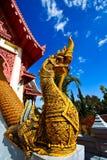 Rey de quejas en Mae Salong Fotografía de archivo