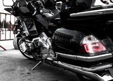 Rey del crucero del turista de la camino-bici fotos de archivo