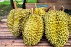 Rey del Durian de frutas foto de archivo libre de regalías