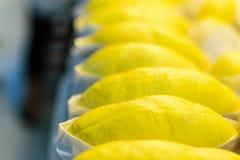 Rey del lóbulo del Durian de la fruta Imágenes de archivo libres de regalías
