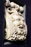 Rey Face Fotografía de archivo libre de regalías