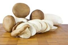 Rey Oyster Mushroom imagen de archivo