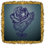 Rey real Frame con Rose stock de ilustración