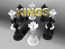 Reyes blancos y negros del ajedrez Fotografía de archivo