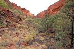Reyes Canyon Imágenes de archivo libres de regalías
