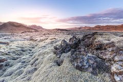Reykjanes Lava Royalty Free Stock Photography