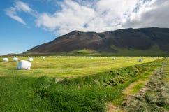 Reykjanes peninsula countryside Stock Photography