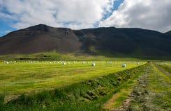 Reykjanes peninsula Stock Images