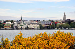 Reykjavik city Stock Photos