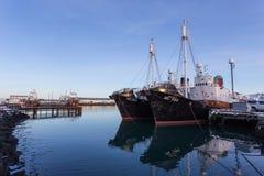 Reykjavik Harbour Stock Photography