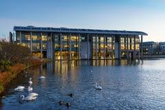 REYKJAVIK, ICELAND/NOVEMBER 01,2017: Здание муниципалитет на утре Стоковое Изображение
