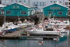 REYKJAVIK, ISLANDIA 25 DE JULIO: Puerto viejo 25, 2013 en Reykjavik, Ic foto de archivo libre de regalías