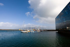 Reykjavik marina Arkivfoto