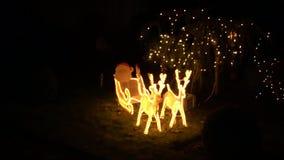 Reynd?er Hristmas dekoration Ying Garden and al night. HD stock footage