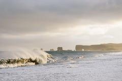 Reynisfjara海滩,冰岛 库存照片