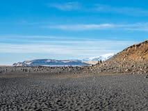 Reynisfjara noircissent la plage de sable dans Vik, Islande Photo stock