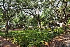Reynolds Square in Savannah. One of the many beautiful square parks in Savannah, Georgia stock image