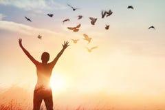 Rezar da mulher e pássaro livre que apreciam a natureza no fundo do por do sol