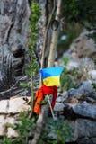 Rezar para Ucrânia fotografia de stock royalty free
