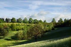 rezerwat przyrody Obraz Royalty Free