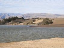 Rezerwat przyrody Charca De Maspalomas Zdjęcia Royalty Free