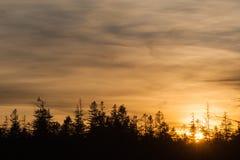 Rezerwat przyrody duży Hohlohsee Zdjęcie Royalty Free