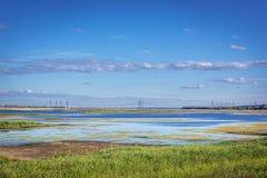 Rezerwat wodny w Chernobyl strefie Zdjęcie Stock