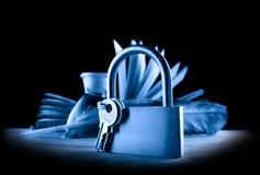 rezerwuje piórkowego keylock Obraz Royalty Free