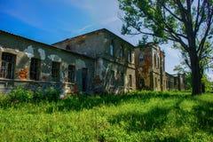 Rezydenci ziemskiej Mir GiÑ ` vka Lyubotin, Ukraina Obrazy Royalty Free