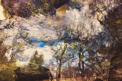 Réflexion abstraite d'arbres sur l'eau ondulée Image stock