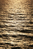réflexion légère d'or Photos stock