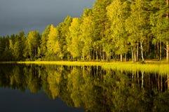 Réflexions d'automne Photographie stock