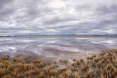 Réflexions sur l'oasis de désert Images libres de droits