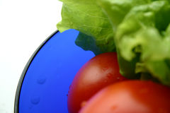 RGB salad II. Here you can find all RGB colours royalty free stock photography