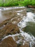Région l'Illinois de conservation de Des Plaines Images stock