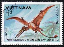 Rhamphorhynchus,大约1984年 免版税库存图片